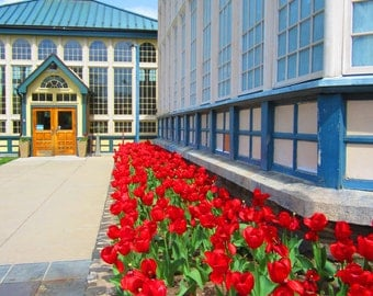 8X10 Rawlings Conservatory Photo, Tulip Photography, Fourth of July Decor, Colorful Historic Builiding, Architecture, Spring Landscape