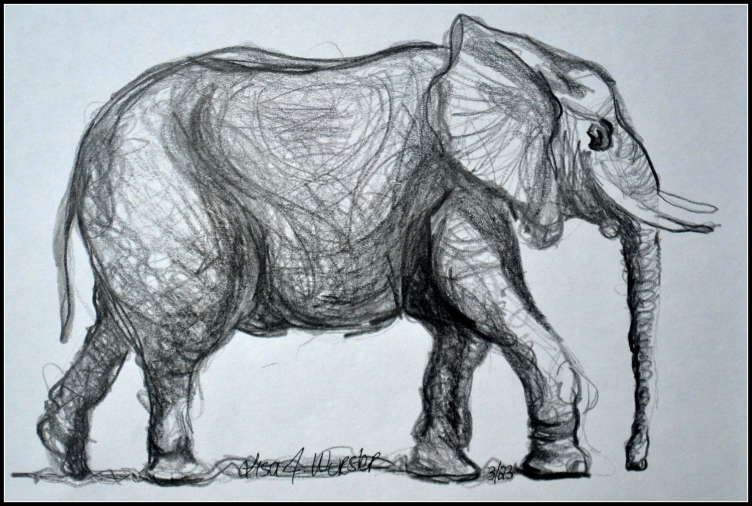 Pencil Drawings Of Elephants Elephant pencil drawing Pencil Drawings Of Baby Elephants