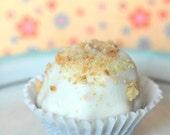 Smores Cupcake Cake Bite (12) Edible Favor, Fathers Day, Wedding, Birthday, Bridal Shower, Baby Shower, Edible Gift