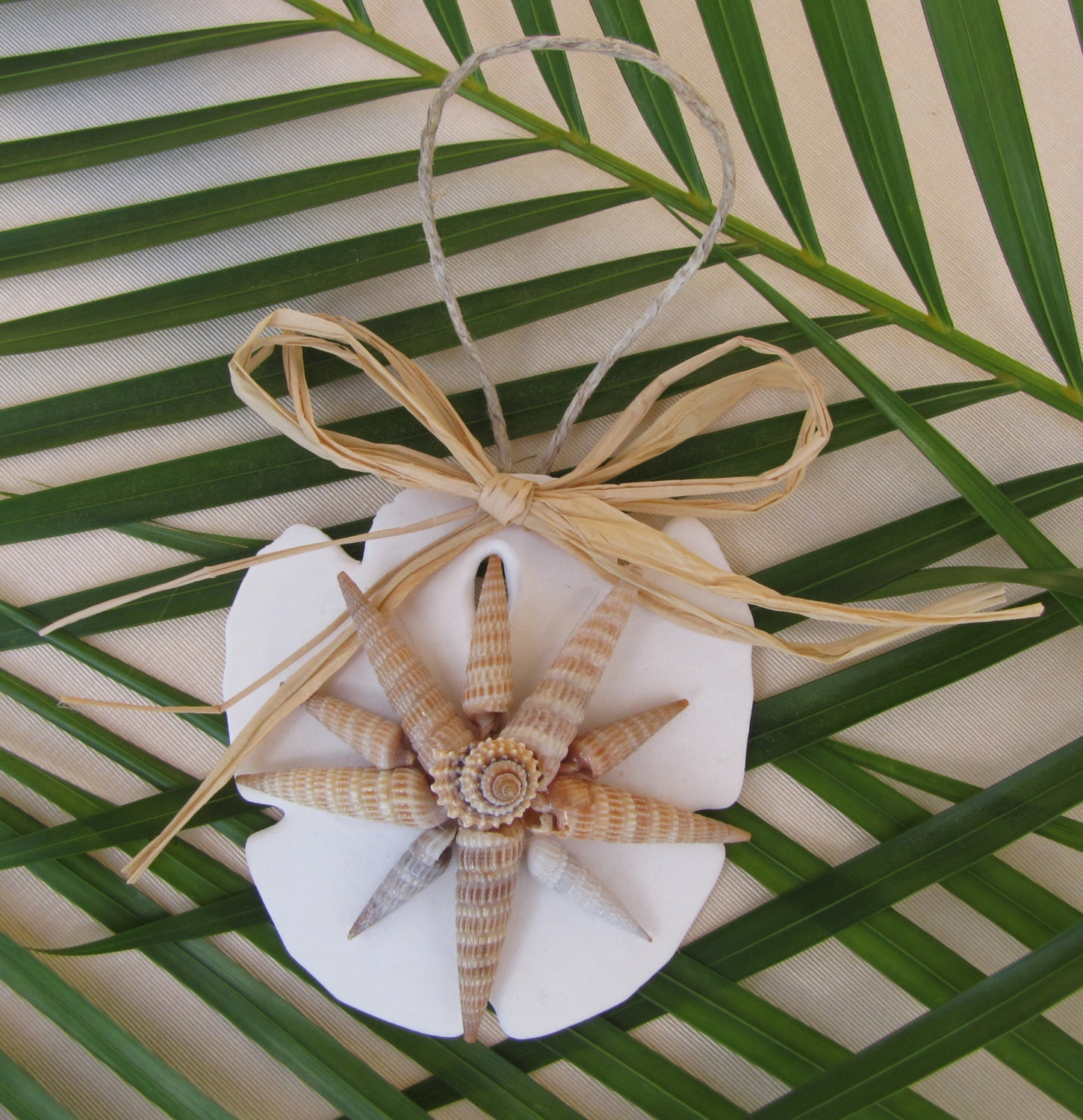 Sand dollar shell ornament beach decor christmas ornament for Shells decorations home