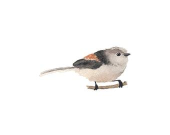 Little Black and Beige Watercolor Bird - Fine Art Print