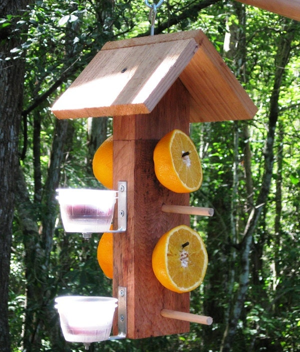Cedar wooden birdfeeder for orioles serve fruit and jelly