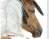Majestic Horse - Buckskin Dun Paint Native Feathers - Art Prints by Bihrle mm94