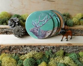 Elk Coaster Set - Illustrated Animal Coasters - Cork-Bottom Coaster Set of 4 - Elk in Green - Gift for Hunter - Men's Gift - Woodland Decor