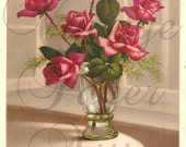 French Vintage Postcard Pink Roses in Glass Vase from Vintage Paper Attic