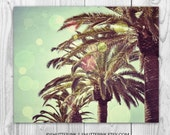 California Photography. Palm Trees. Beach. Los Angeles. Bokeh. 8X10
