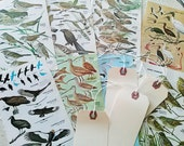 Bird Prints 10 Vintage Pages 4 Manilla String Tags Artists Birds Artwork Art Supplies Collage Artist Mixed Media Assemblage Paper Pages