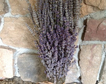 Dried Lavender Bouquet, French & English Combined