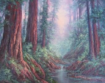Santa Cruz, Big Basin Redwoods, Original Fine Art, Oil Painting by Griselda Tello.