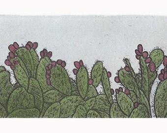 Hand colored cactus etching with aquatint, Southwest desert art print
