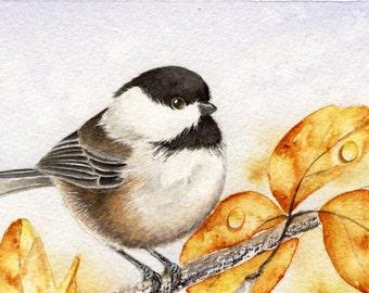 Fall Colours - Original Chickadee Painting 4 x 6