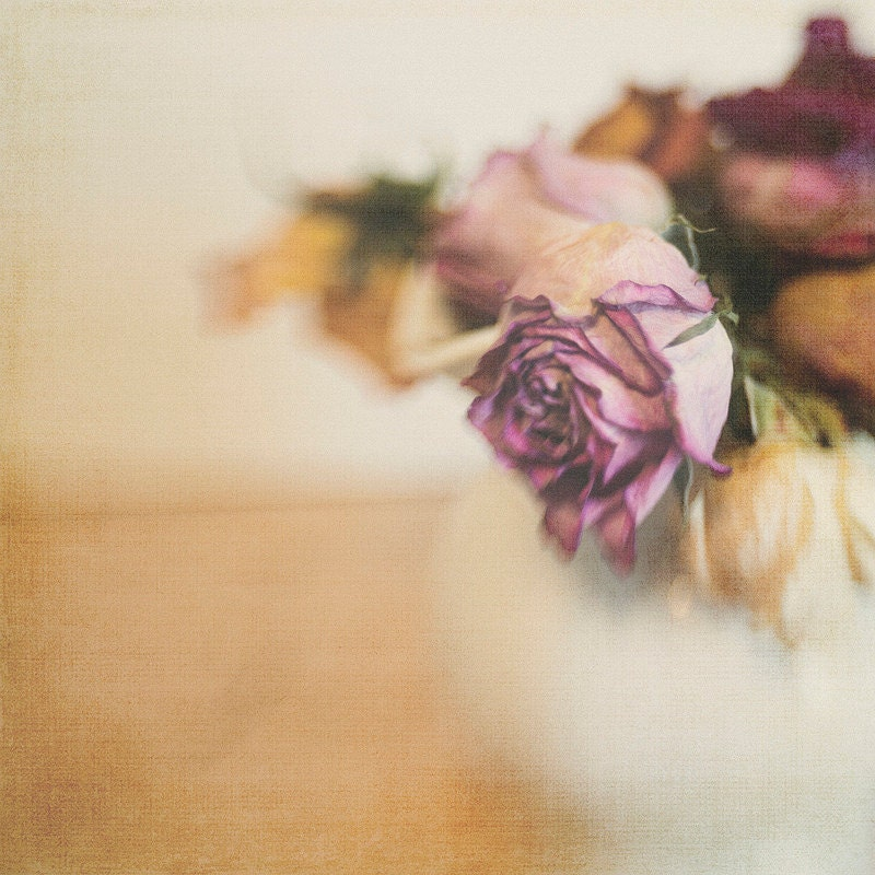 Gallery32etsy Vase of Dried Linen Roses 8x8 Flower Photography Home Decor Photo Modern Wall Decor Nursery Decor Office Deco