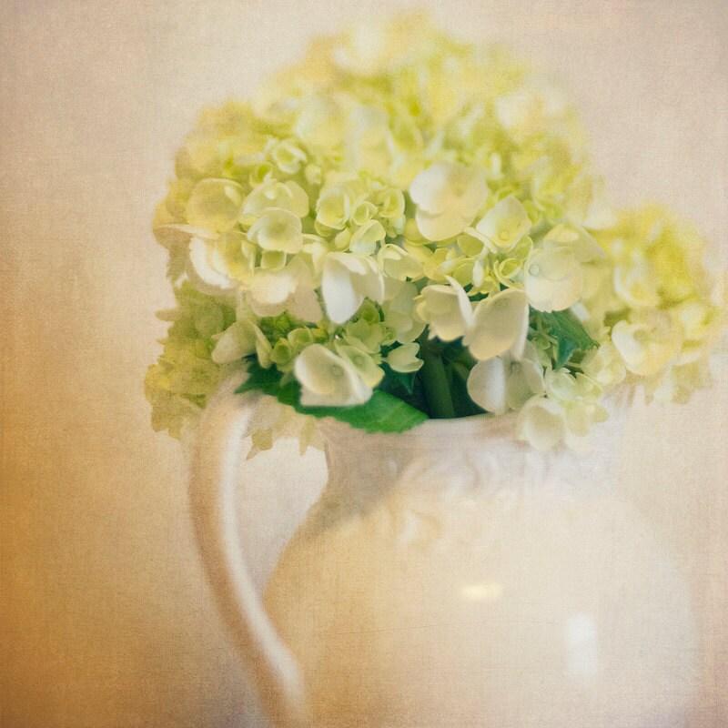 Trina Baker Photography White Vase Green Hydrangea