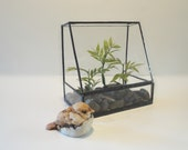 Glass Terrarium, Planter, Home Decor, Indoor Garden Art, Recycled Glass, Atrium, Conservatory, Greenhouse, Diorama Container, Garden Art