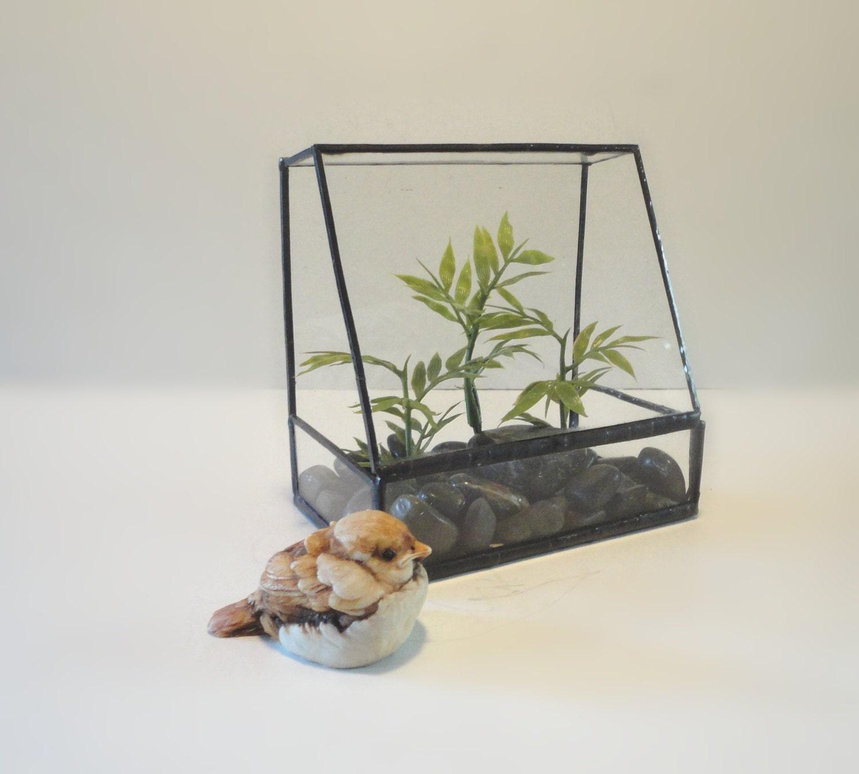 Glass terrarium planter home decor indoor garden art for Indoor gardening glasses