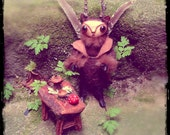 Pixie Shapeshifter Fae Doll