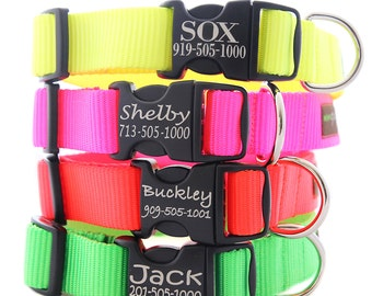 Customized Neon Dog Collar -- 4 Fluorescent Colors with info Engraved on the Buckle