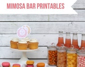 mimosa bar and once upon a brunch printable party/baby shower files