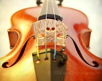 Violin Photograph, Musical Art, Still Life Photo, Brown, Black, Cream, Wall Decor, Instrument, 8x8 inch Fine Art Print - Somewhere Quiet