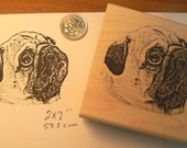 pug dog rubber stamp  P7