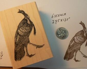 P13 Wild turkey rubber stamp WM