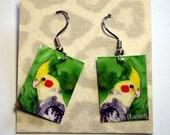 Cockatiel Bird Earrings - Laminated Paper, Surgical Steel French Hooks - Ranlett