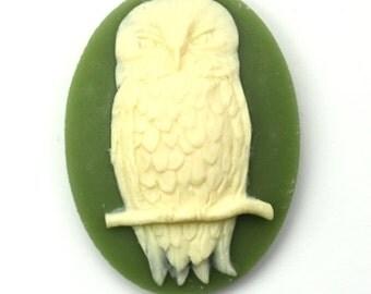 Plastic Cameos Owl Bird 40x30mm Olive Green / Ivory (2) IC099