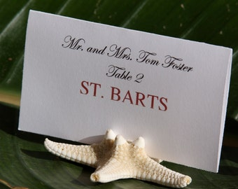 Beach Wedding + Place Card Holder + Natural Starfish Place Card Holders- Set of 50