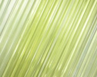 CHARDONNAY Glass Rods Original Vetrofond Production for Lampworking one quarter pound