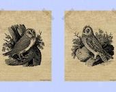 Printable 8 x 10 Owl Print Set Barn Owl Short Eared Owl Fall Print Owl Prints Woodland Rustic Style Animal Prints Black on Burlap Print