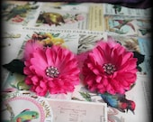 a charming pink night faerie hair clips (pair)