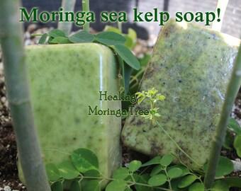 Moringa Sea Kelp Soap!