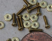 Micro Brass Screws and Nuts