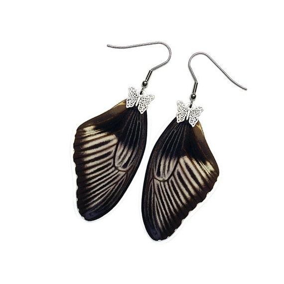 Real Butterfly Wing Earrings (Papilio Polytes Forewing - E198)