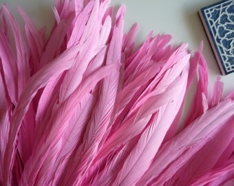 "COQUE TAIL FEATHERS Loose / Sweetheart, Cotton Candy  Pink, 11"" long  / 150"