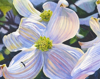 Floral Watercolor Original Painting White Dogwood by Cathy Hillegas, 12x16, watercolor flowers, framed art, blue purple yellow green brown