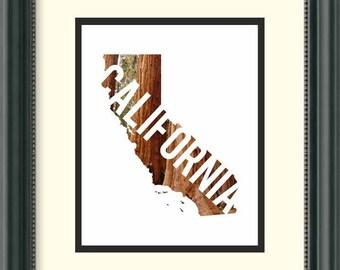 California - Redwoods - Digital Download