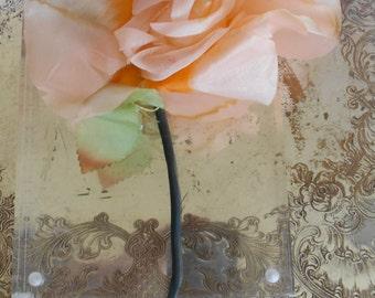 1950's Pale Orange Rose