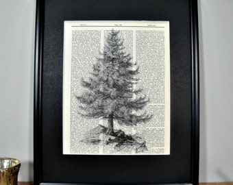 FRAMED Vintage Dictionary Print - Woodland Series - Black and White Evergreen Tree