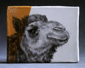 Hand Painted Dromedary Camel Portrait Wall Tile Deep Yellow