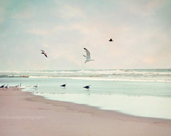 "Ocean photography,Beach home decor, ""Take off"" ocean, seashore, summer decor, beach photography,seagulls,birds,seabirds,aqua,blue,sky,clouds"