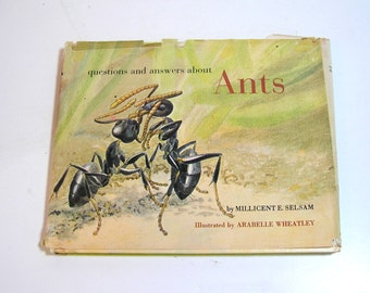 Questions And Answers About Ants By Millicent Selsam Vintage Book