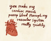 SALE: Cardiac Muscle card