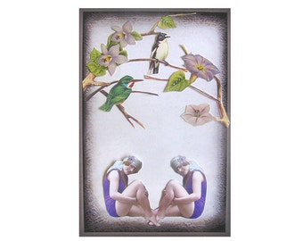 bird art pet collage vintage home decor shabby chic woman beach twins tagt team