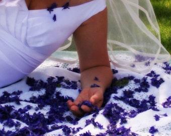 Blue Dried Flowers, Purple Larkspur, Confetti, Wedding Confetti, Bulk Flowers, Tossing Flowers, Petal Confetti, Biodegradable, 60 US cups