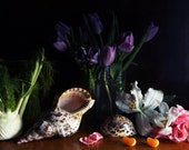 Dutch Inspired Still Life with  Purple Tulips  and Seashells and Oranges
