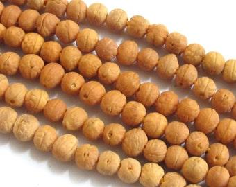 Light brown small Bodhi seed beads - 15 beads - NB103