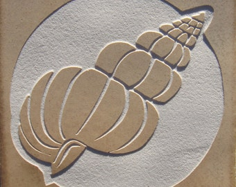 4x4 Spiral Seashell Tile - Etched Porcelain Tile Accent or Coaster - SRA