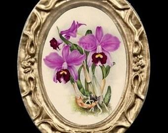 Orchid Flowers Miniature Dollhouse Art Picture 6347