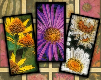 "Bright Daisies 1.5"" x 3/4"" Bamboo Tile images Digital Collage Sheet--Instant Download"